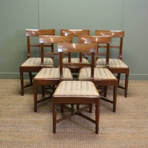 Stunning set of Six Regency Mellow Mahogany Antique Dining Chairs