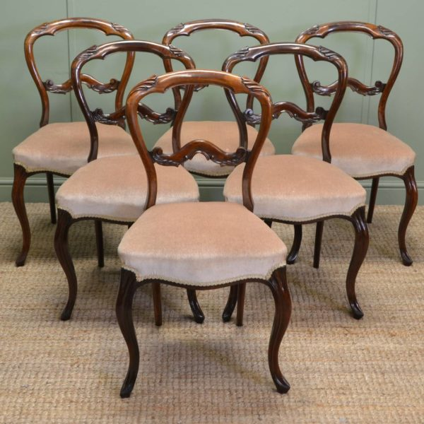 Spectacular Set Of Six Victorian Solid Rosewood Antique Balloon Back Chairs
