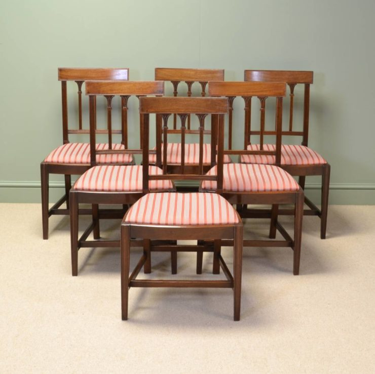 Stunning Set of Six Georgian Mellow Mahogany Antique Dining Chairs