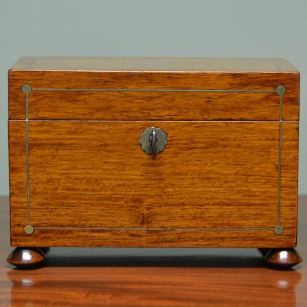 Spectacular Regency Rosewood Antique Tea Caddy