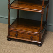 Unusual Regency Rosewood Antique What Not