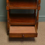 Unusual Victorian Mahogany Antique What Not