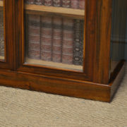 Striking William IV Rosewood Antique Glazed Cabinet / Bookcase