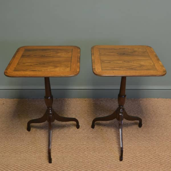 Spectacular Rare Pair of Regency Occasional Tripod Tables