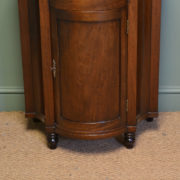 Unusual Small Bow Fronted Antique Mahogany Victorian Side Cabinet