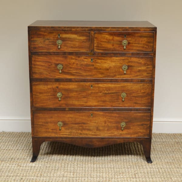 Country House Regency Mahogany Antique Caddy Chest of Drawers