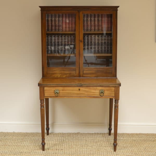 Unusual Regency Mellow Mahogany Antique Writing Stand / Bookcase