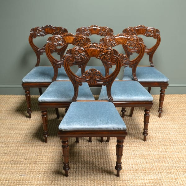 Spectacular Set of Six William IV Mahogany Antique Dining Chairs