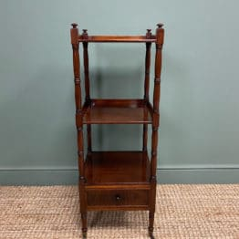 Fine Quality Regency Mahogany Antique What-Not